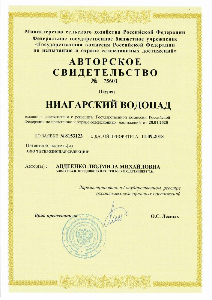 Огурец НИАГАРСКИЙ ВОДОПАД F1