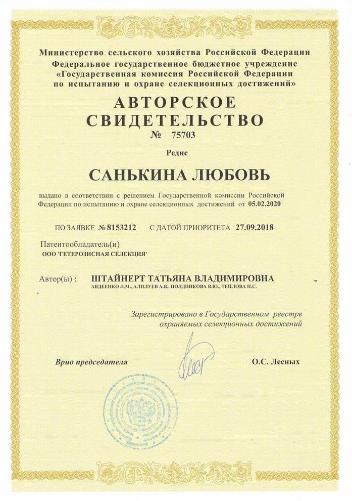 Редис САНЬКИНА ЛЮБОВЬ