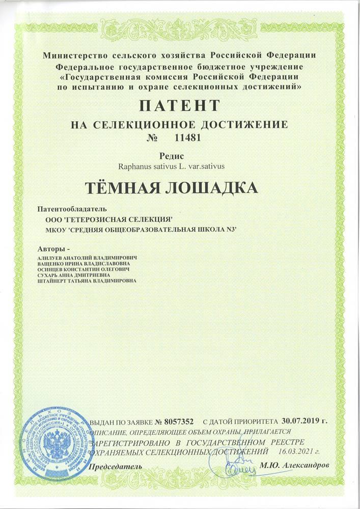 Редис ТЁМНАЯ ЛОШАДКА