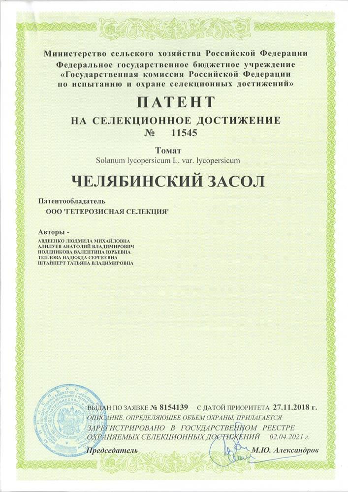 Томат ЧЕЛЯБИНСКИЙ ЗАСОЛ