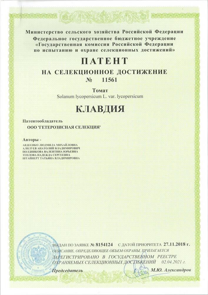 Томат КЛАВДИЯ