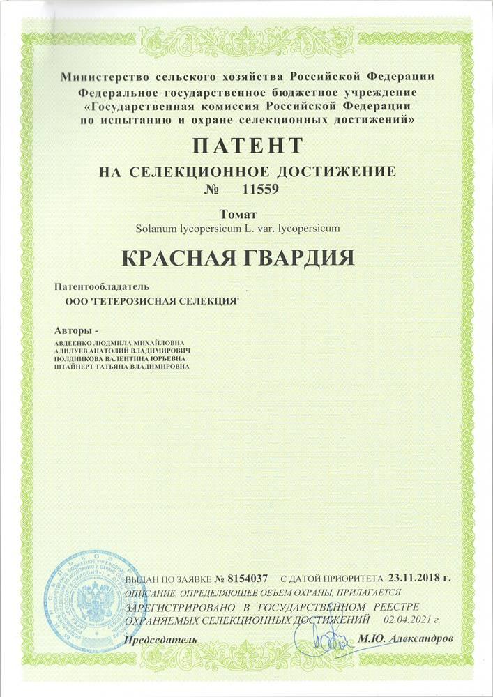 Томат КРАСНАЯ ГВАРДИЯ F1