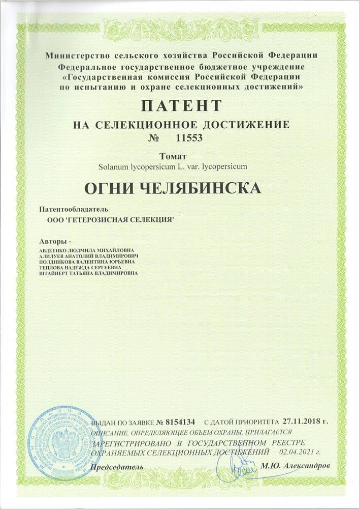 Томат ОГНИ ЧЕЛЯБИНСКА