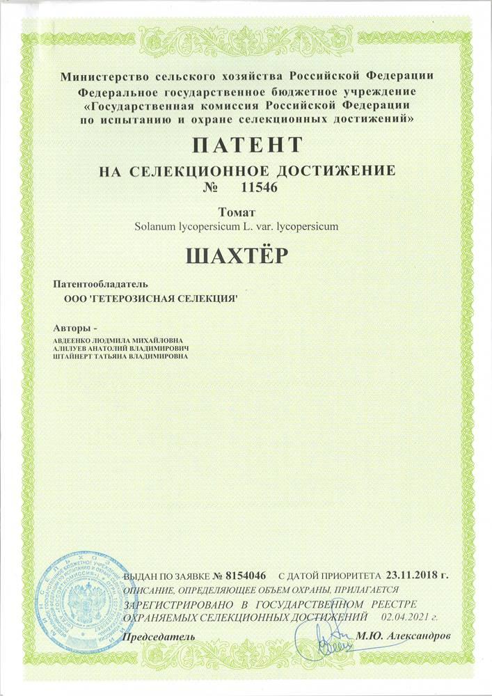 Томат ШАХТЁР F1